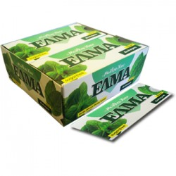 ELMA Chewing Gum Spearmint - blistr